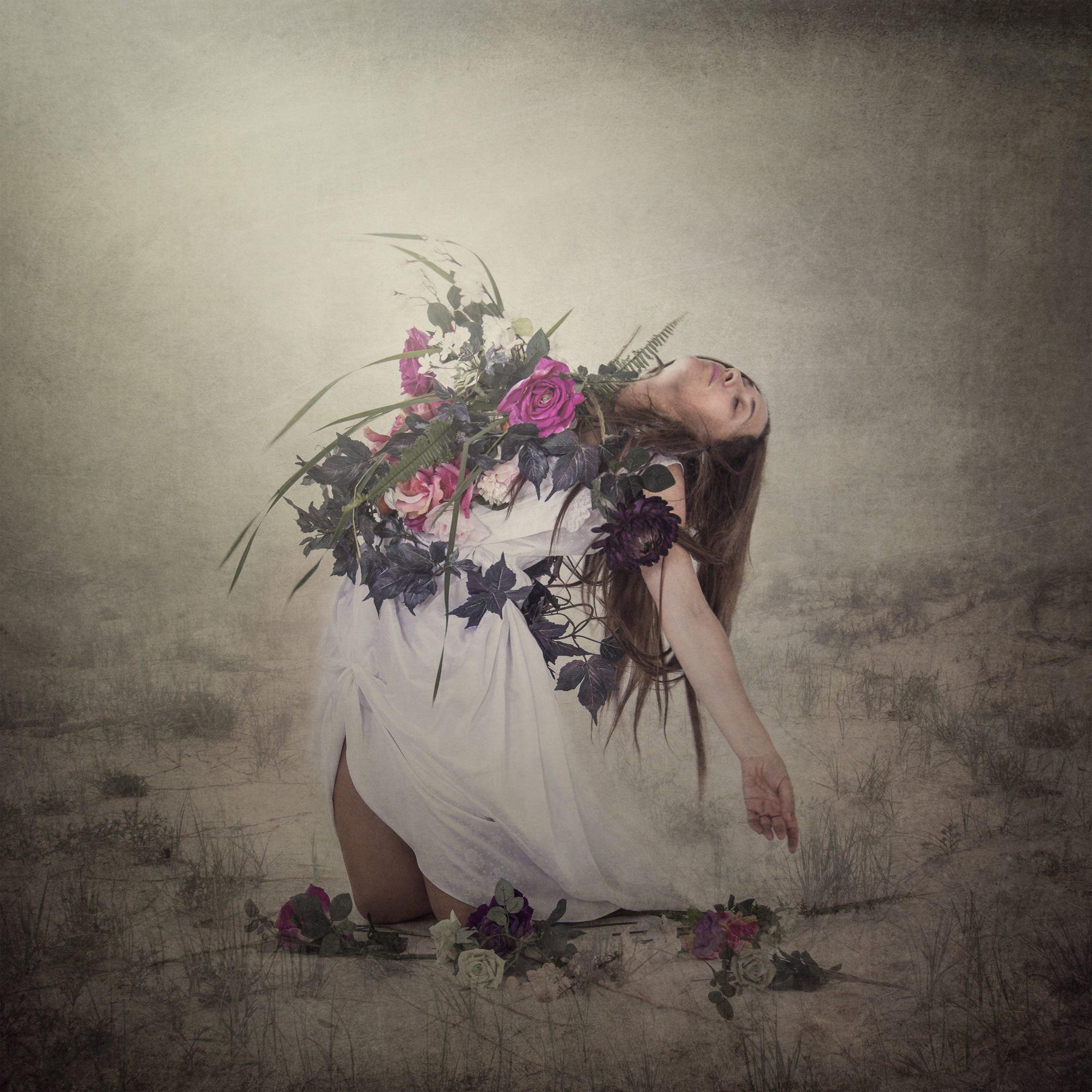 bloom-i-fine-art-photographer
