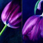 The Tulips Couple