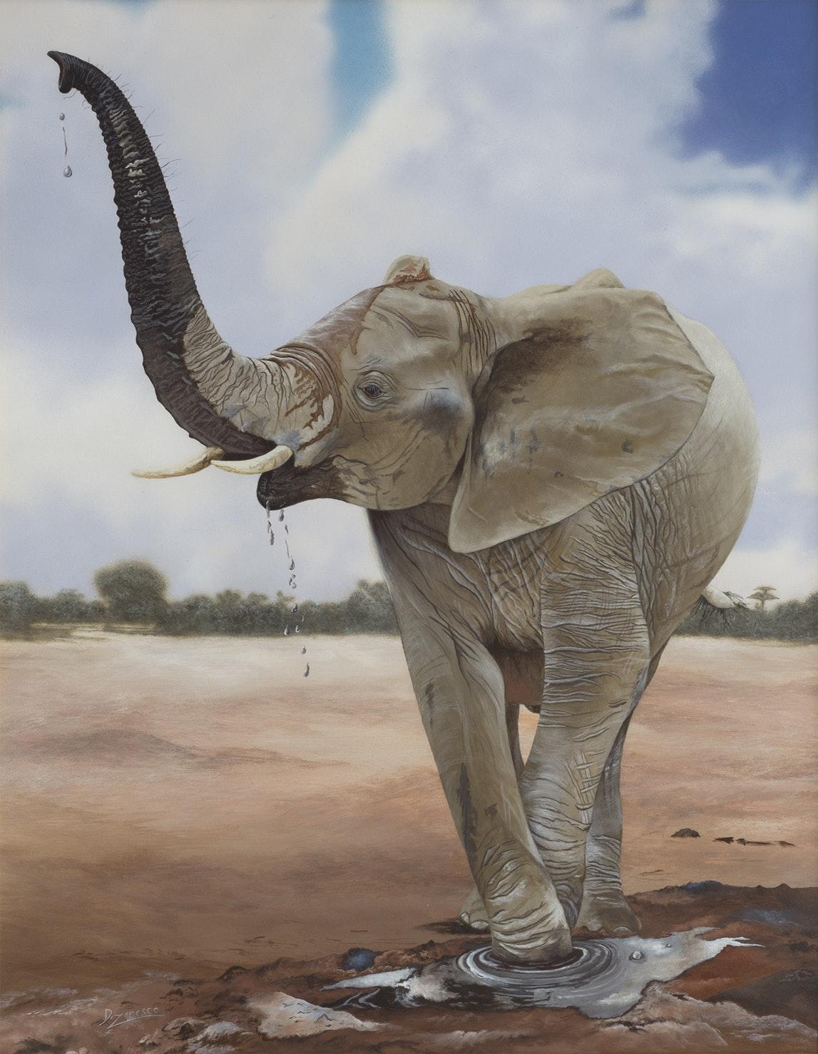time-for-mud-african-elephant-calf-dario-zanesco