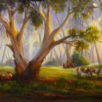 Grazing in the Australian bush