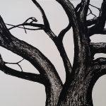 Old Poplar Tree