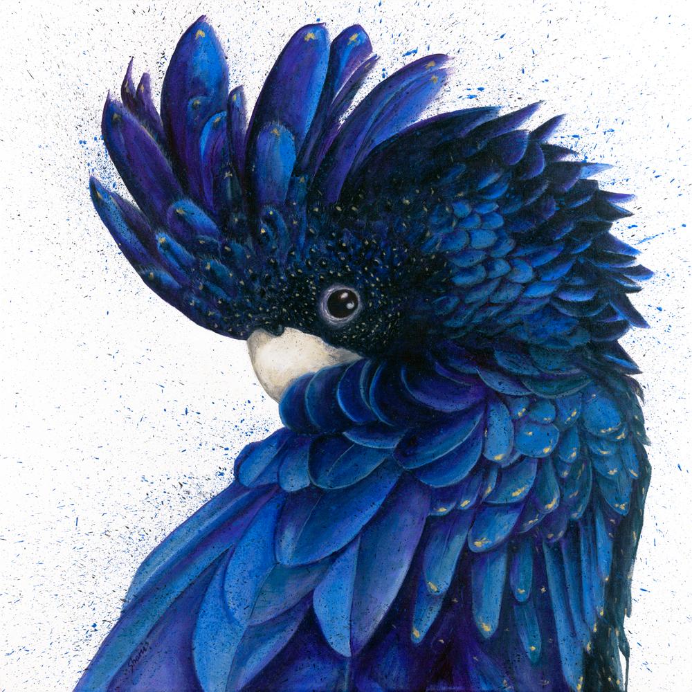 sh-white_001_bkack-and-blue