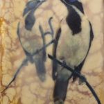 Blue Faced Honeyeaters 3