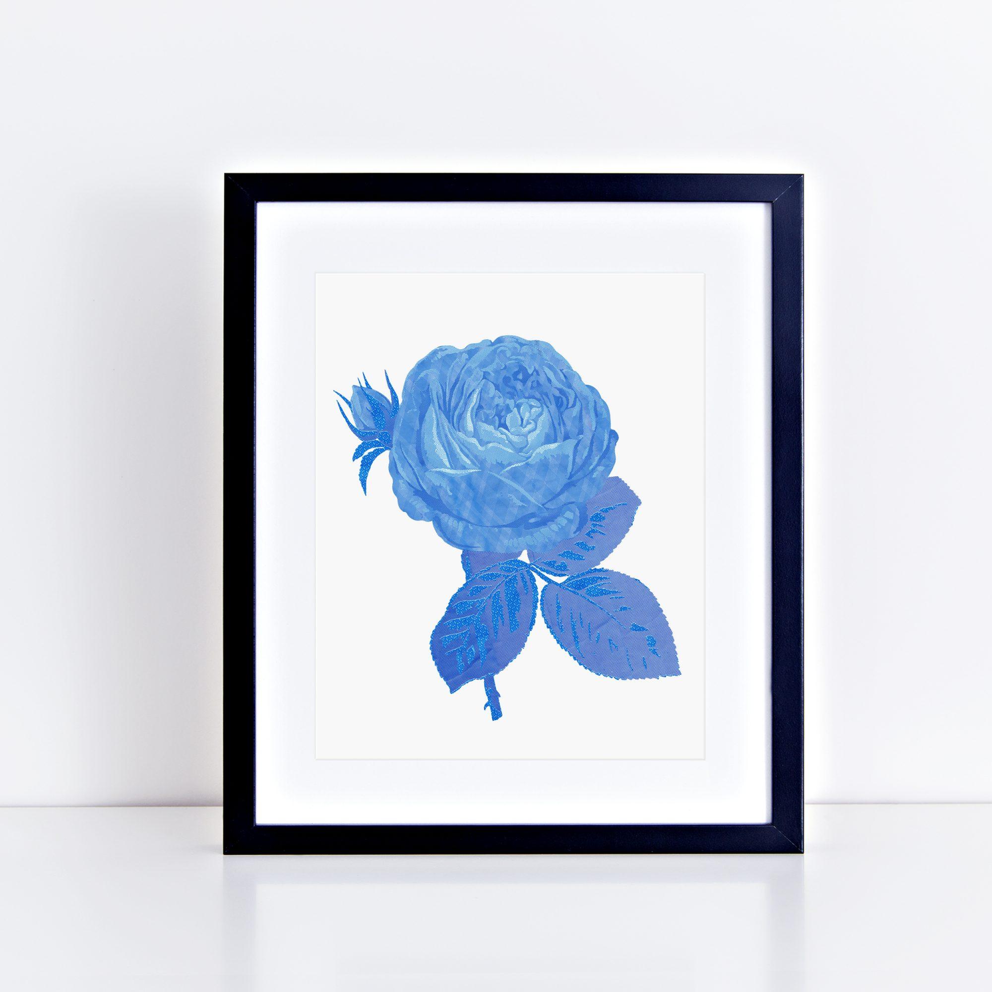 fineart-chintz-rose-10×8