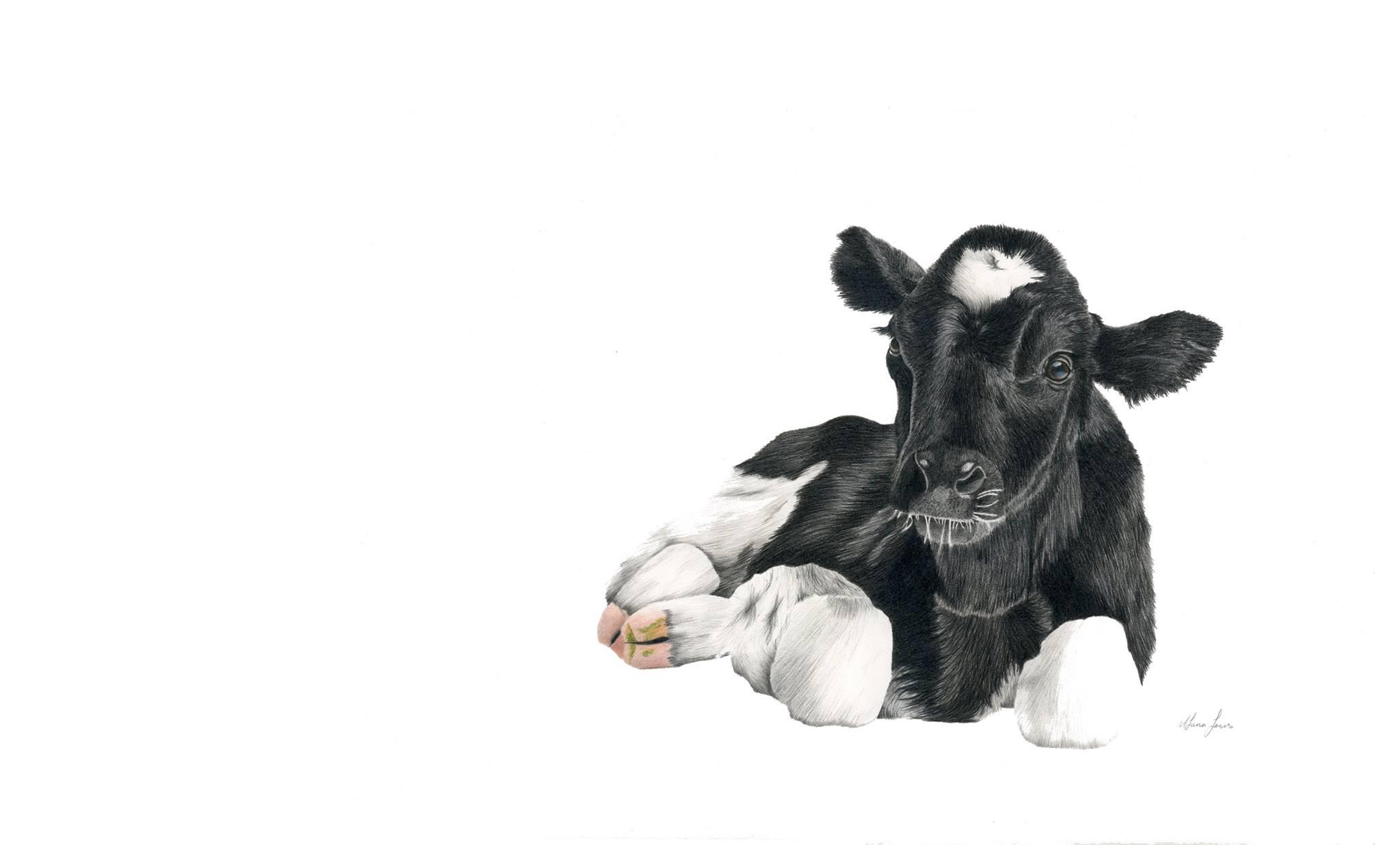 holstein-cow-print