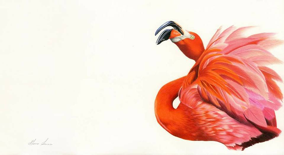 red-flamingo-print