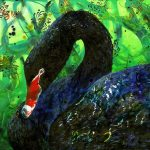 Black Swan – Ltd Ed Print