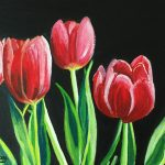 Tulips of Hope