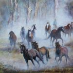Running in the Brumbies