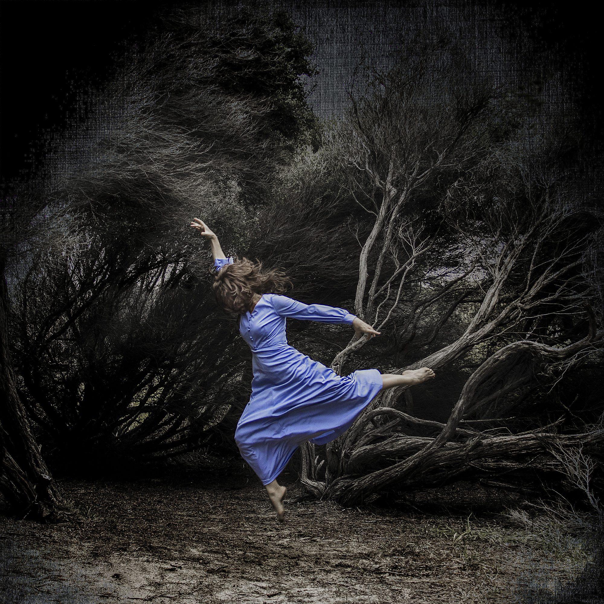 whispering-woods-fine-art-photographer