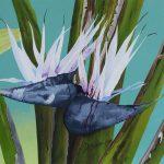 Giant Bird of Paradise