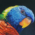 Sassy – Rainbow lorikeet painting
