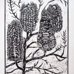 Banksia Lino cut print – limited edition
