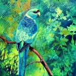 Secluded Glade – Ring necked parrot