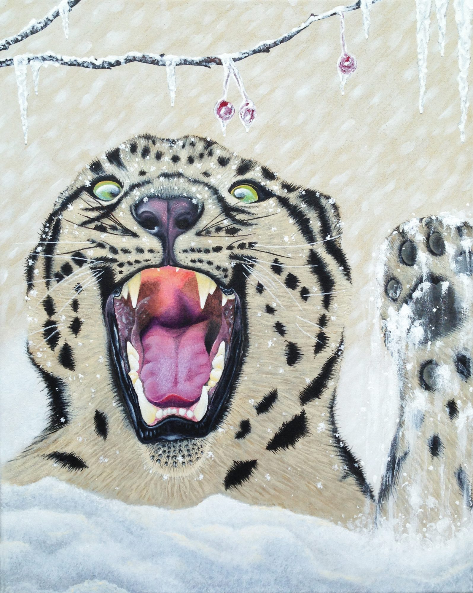young-snow-leopard