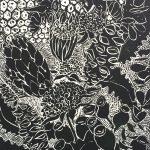 Ltd Ed Print Waratahs Black