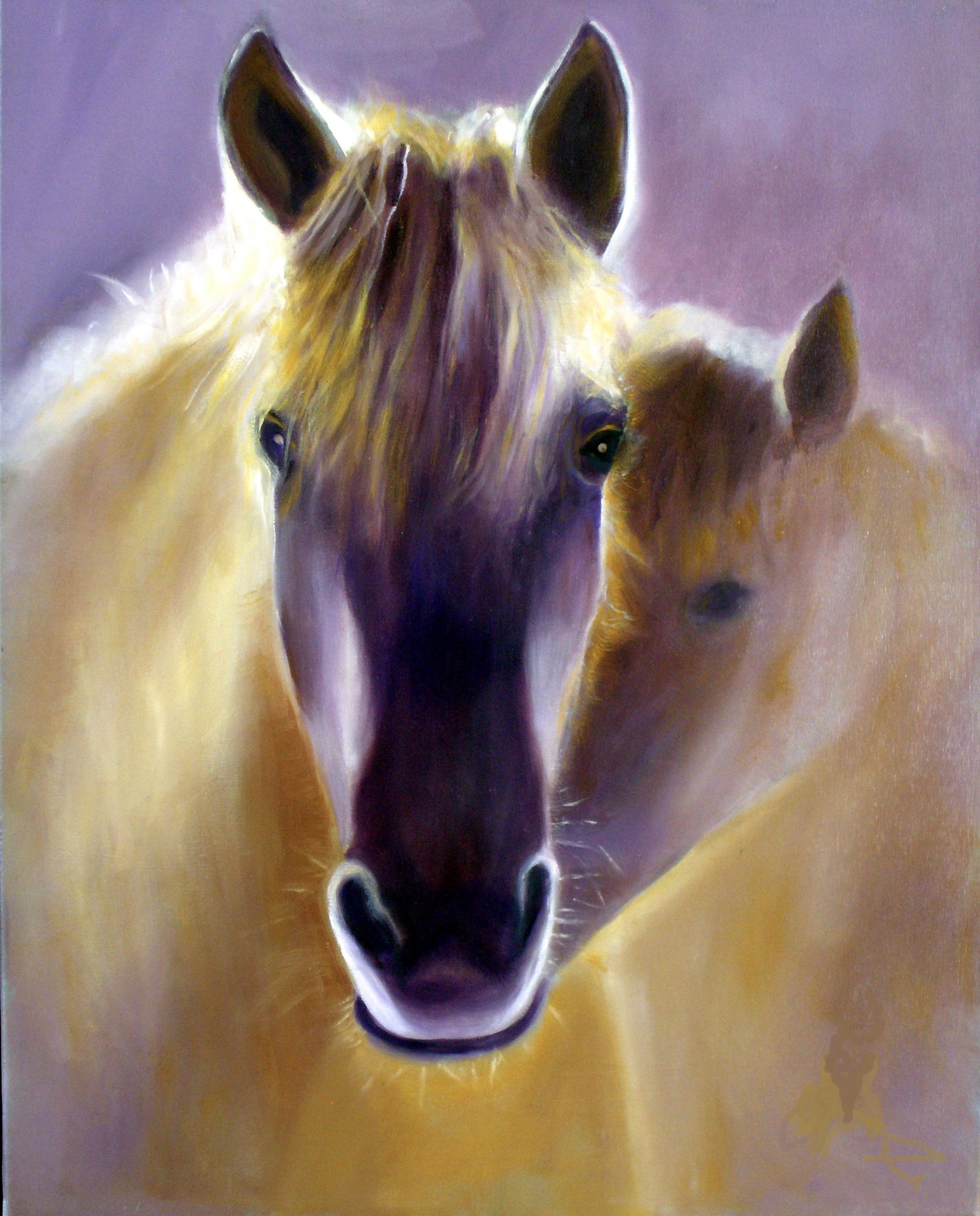 Golden Horses At Morning Sun Art Lovers Australia