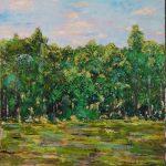 Rain Forest Byron Creek