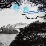 Sydney Angophora Symphony