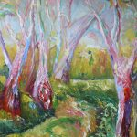 Very Colourful Gum Trees