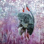 Duet – Sarus Cranes