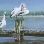 Pelican Briefing