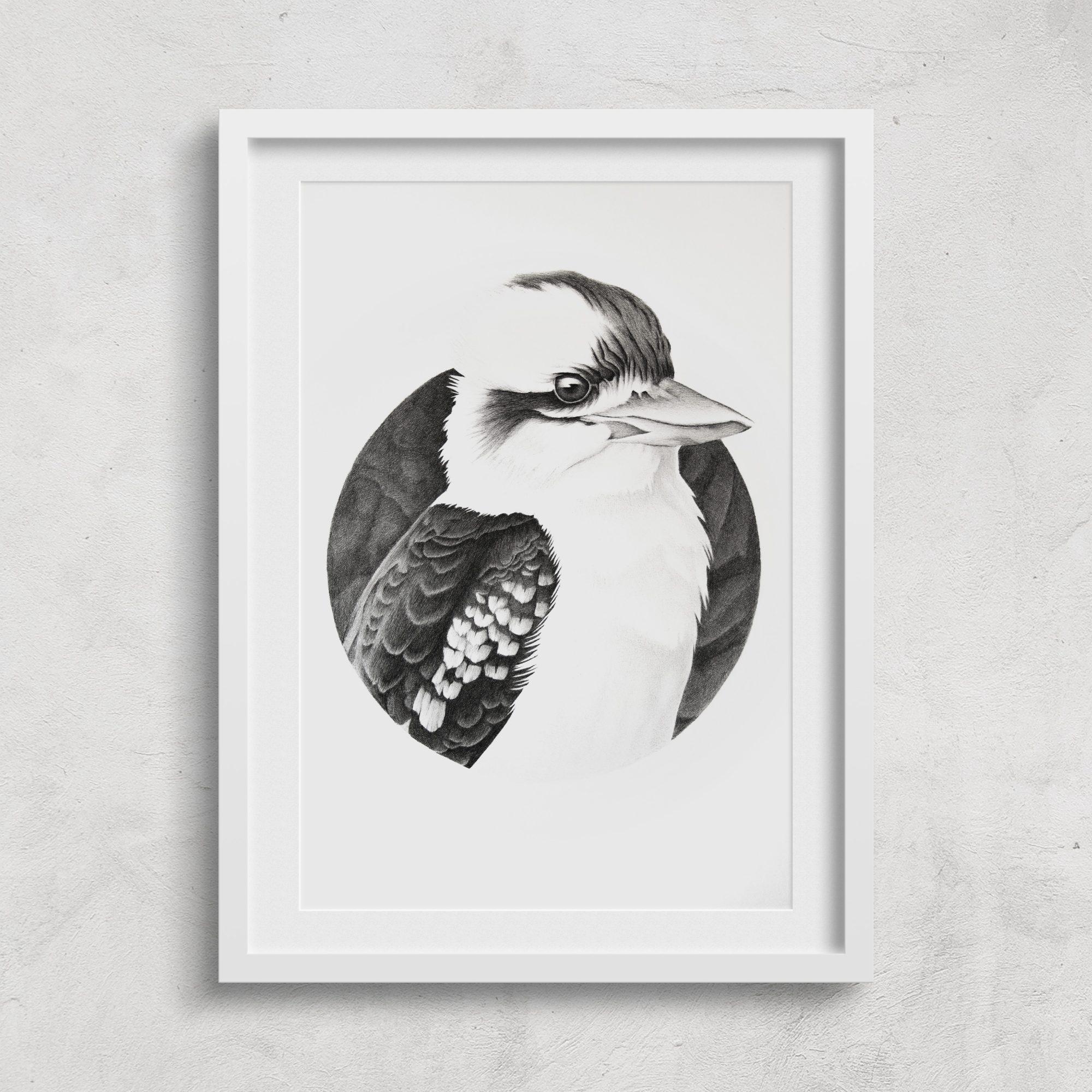 2018_kookaburra_framed_01