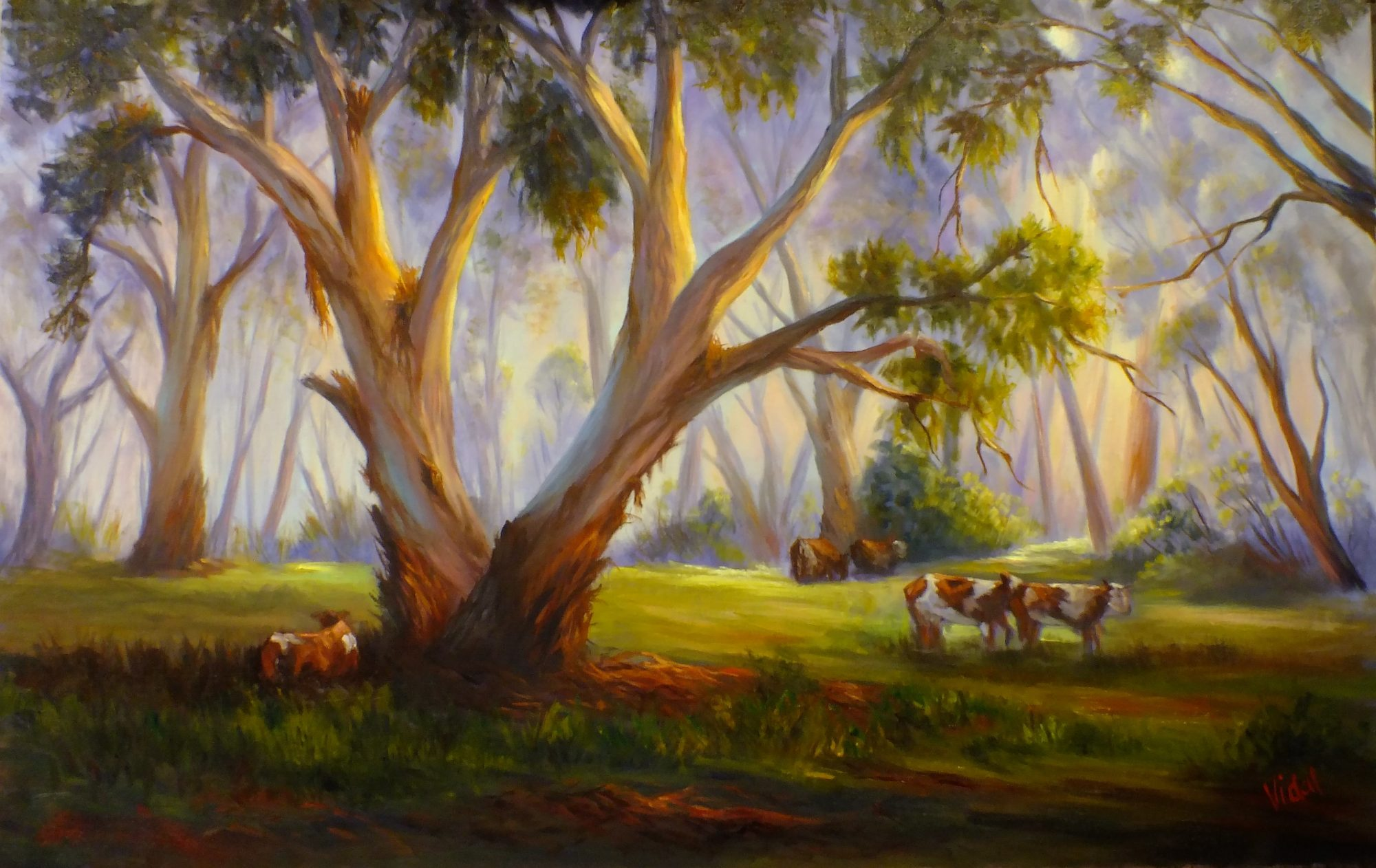Misty morning grazing under gum tree oil painting Chris Vidal b