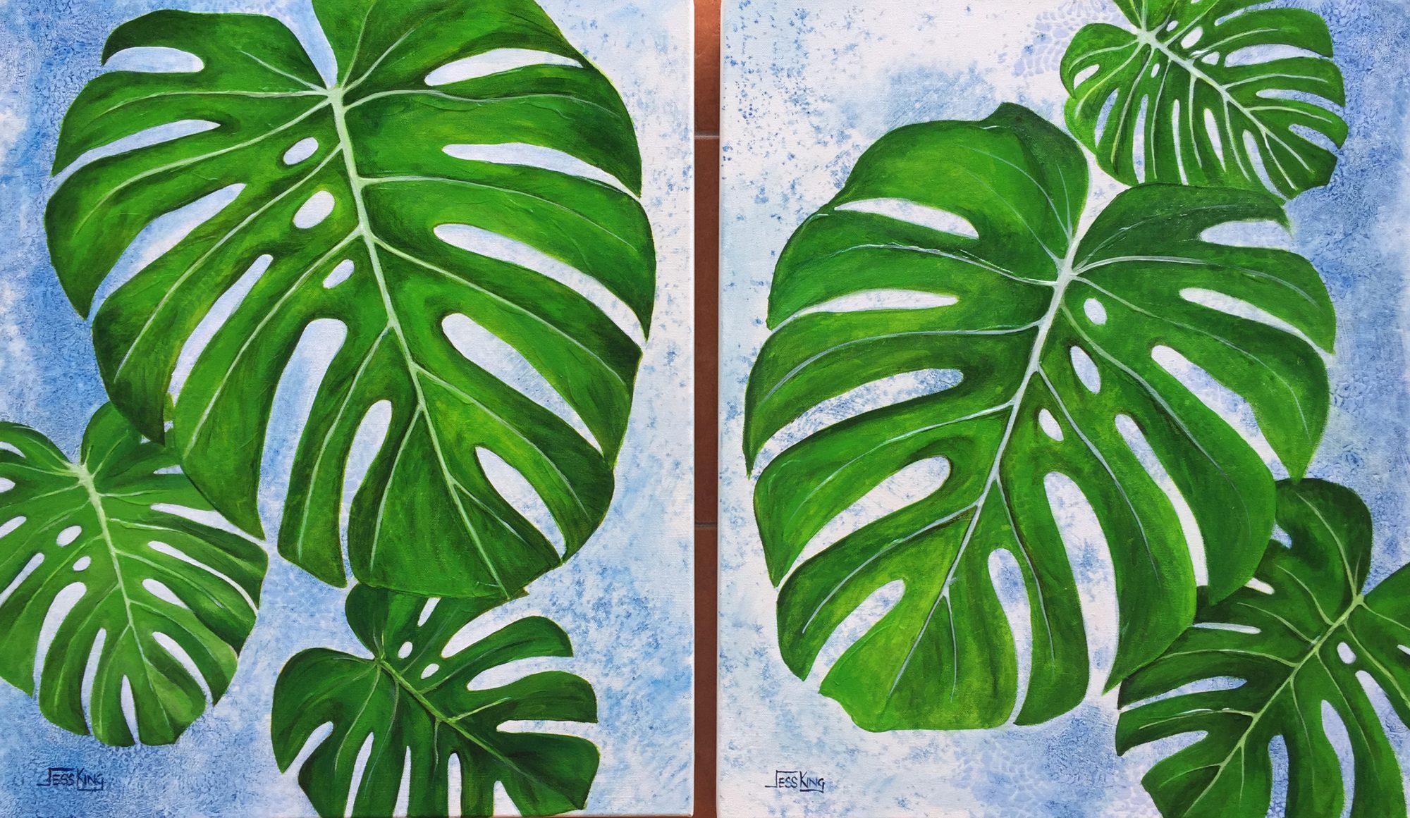 monstera leaves 1&2