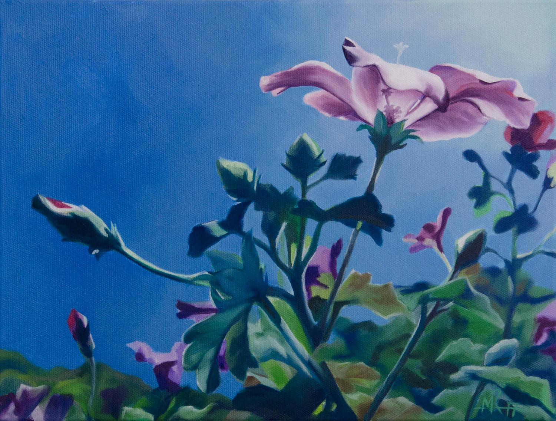 Lilac-Hibiscus