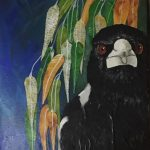 Magpie in the Gumtree