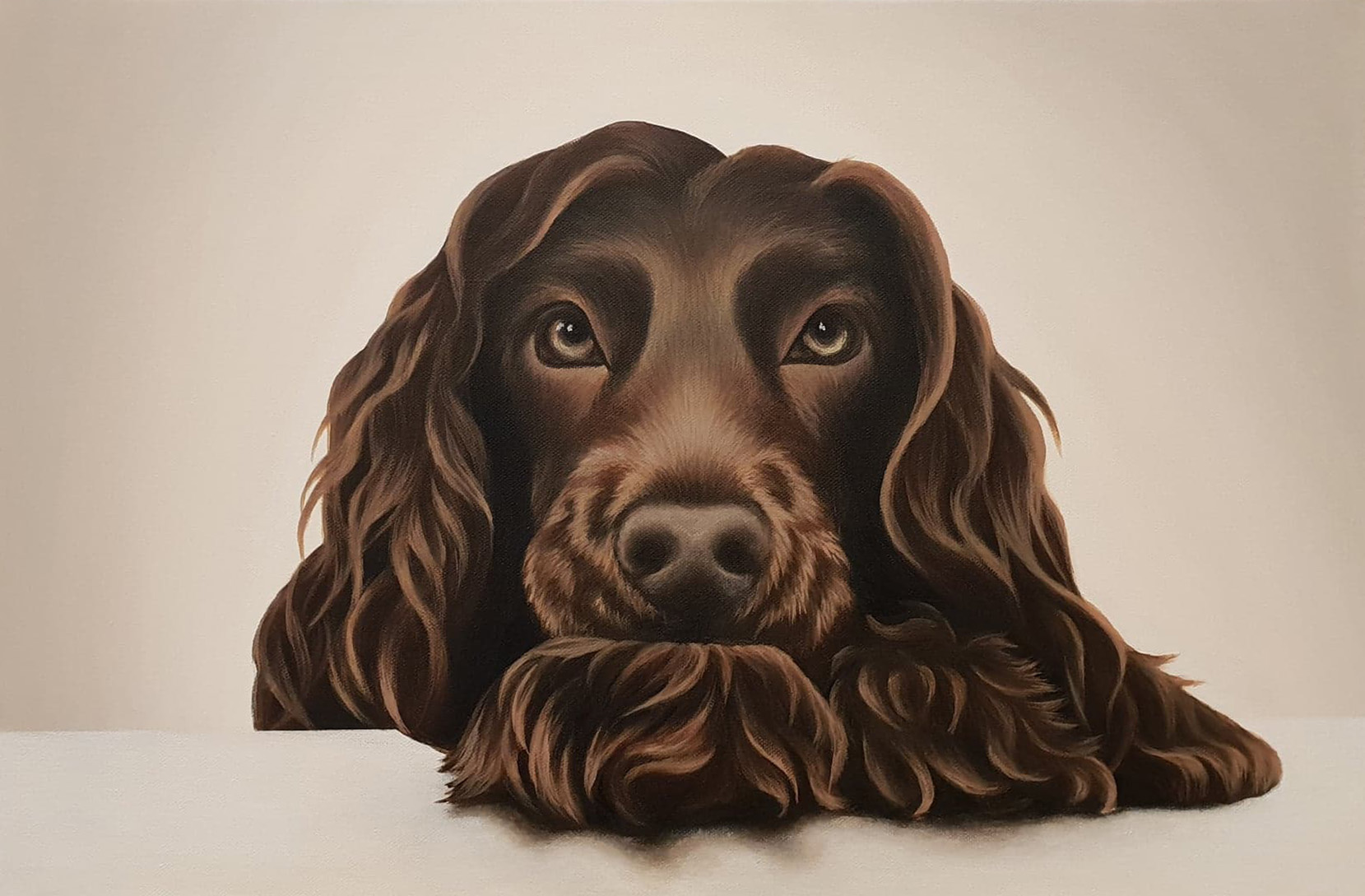 CockerSpaniel1
