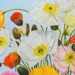 Joyful Poppies – Ltd Ed Print on Canvas