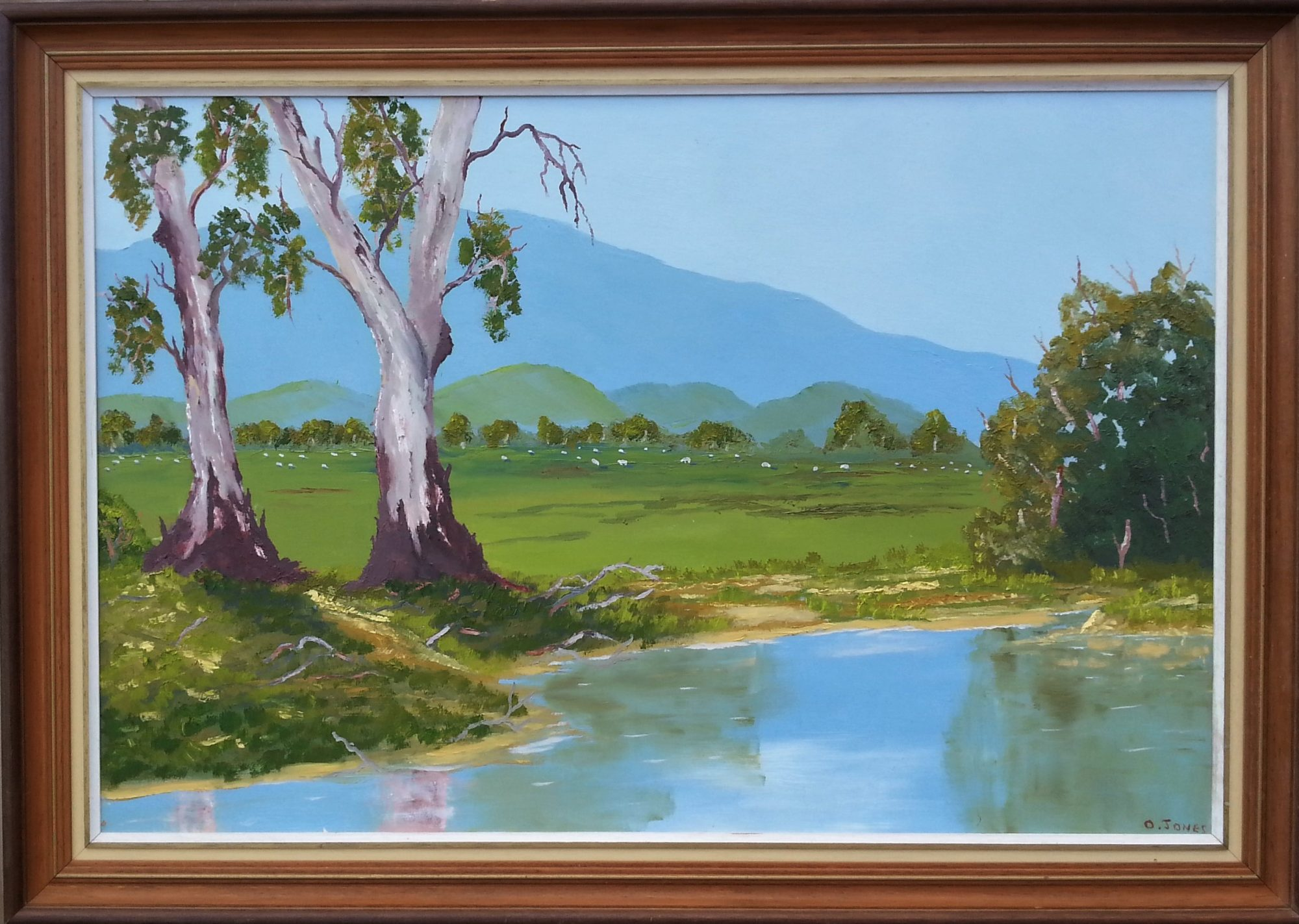 GUM TREES BY THE WATER HOLE
