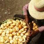 Market Day, Mandalay, Myanmar – Ltd Ed Print