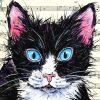 Meow Detail 1