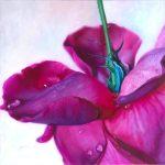 Velvet Dew Awakening