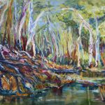 AUSTRALIAN BILLABONG WITH FALLEN GUM TREE BRANCHES