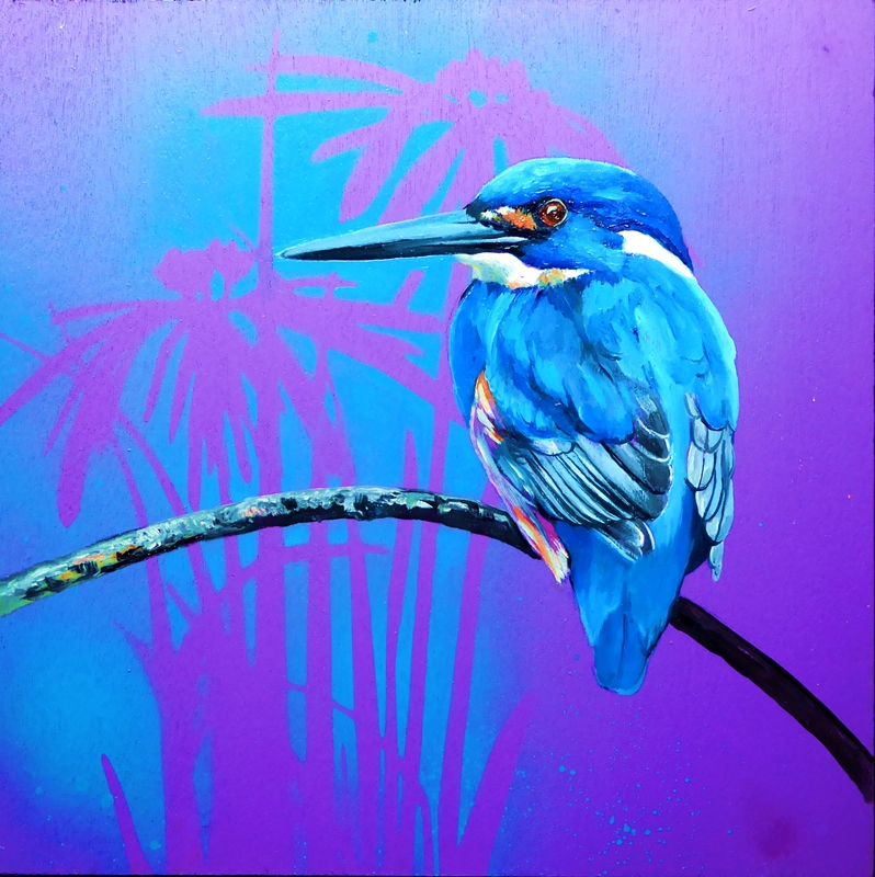 Feathery all-sorts 6 Azure kingfisher.web