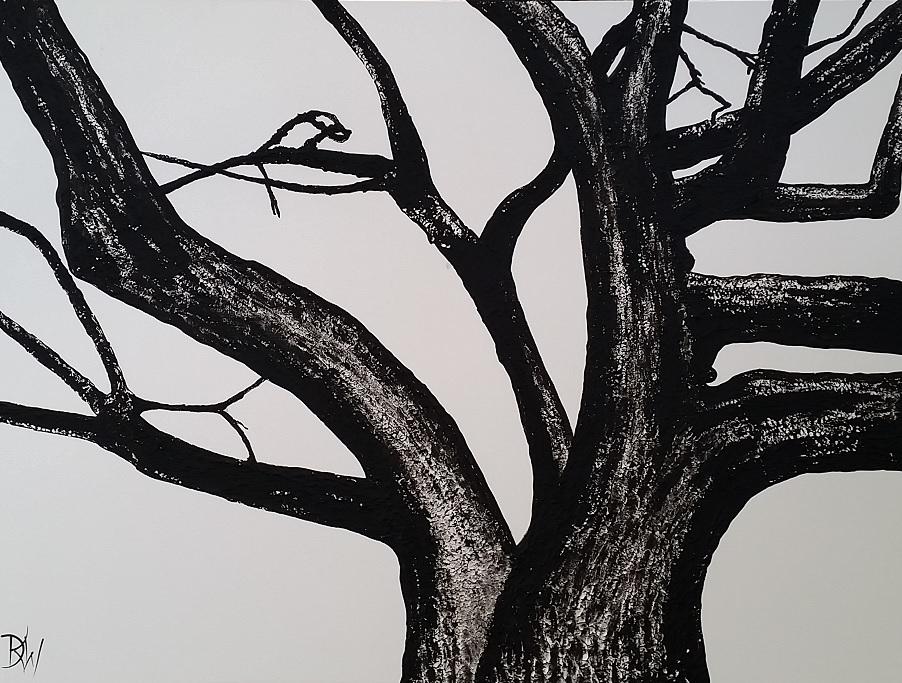 Our Old Poplar Tree – crop Desley Art