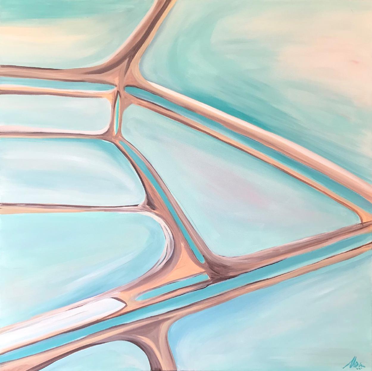 Useless Loop Salt Flats, Shark Bay WA – The Salt Series