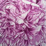 PEONY IN MAUVE – LIMITED EDITION GICLEE PRINT