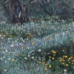 Spring flowers, Kosciuszko