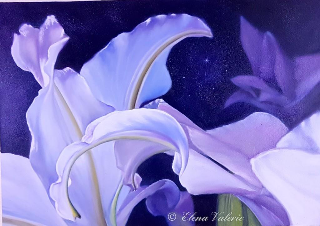 White Lilies Elena Valerie 03 2017