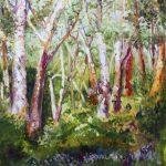 KERSBROOK GUM TREES