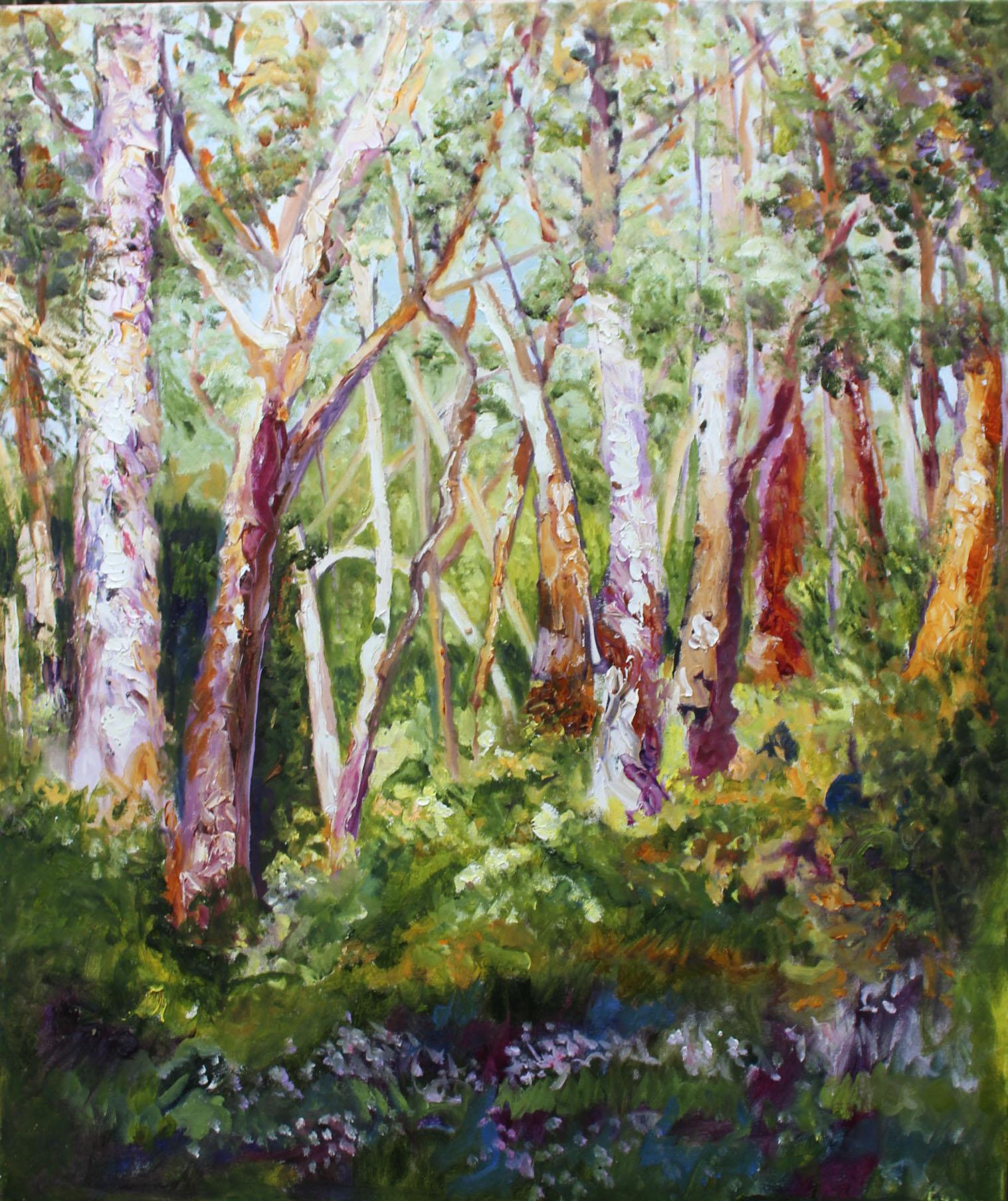 Kersbrook Gum Trees Final