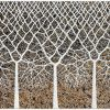 Trees Of Life 100cm 75cm Miranda Lloyd