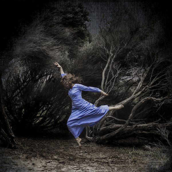 Whispering Woods4