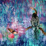 Blue Lagoon – Australian darter and crested jacana