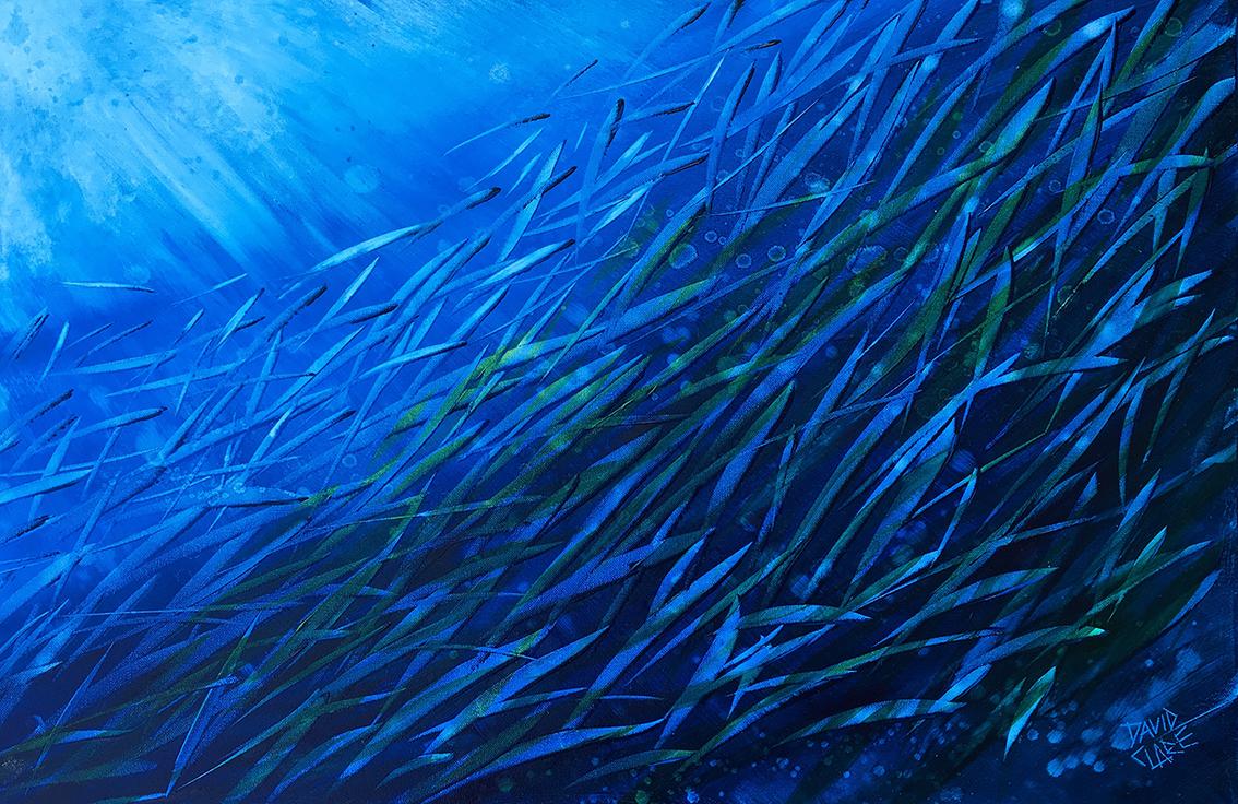 Fish School 10 Lr